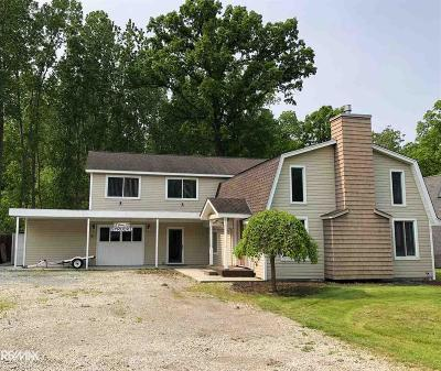 Harsens Island Single Family Home For Sale: 2159 North Channel