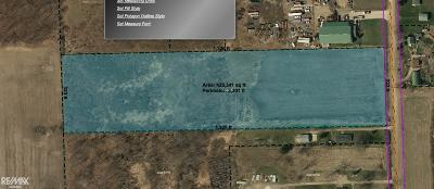 Residential Lots & Land For Sale: 57865 Rosell