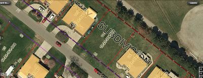 Clinton Township Residential Lots & Land For Sale: 18767 Millar