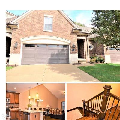 Clinton Township Condo/Townhouse For Sale: 21141 Daisy St