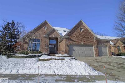 Clinton Township Single Family Home For Sale: 42855 Tonquish Drive