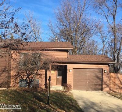 Royal Oak Single Family Home For Sale: 609 Amelia