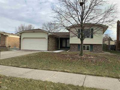 Sterling Heights Single Family Home For Sale: 38944 Lowell Ct