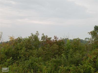 Columbus Residential Lots & Land For Sale: Gratiot Parcel C