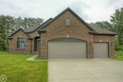 Macomb Twp Single Family Home For Sale: 50736 Summit View Drive