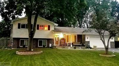 Fort Gratiot Single Family Home For Sale: 3235 N Shoreview Dr