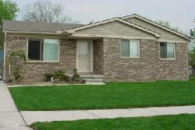 Macomb Single Family Home For Sale: 28740 Felician