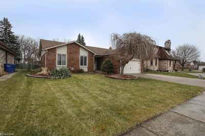Macomb Single Family Home For Sale: 29744 Ledford