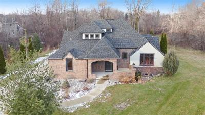 Macomb Single Family Home For Sale: 11859 Liberty Woods