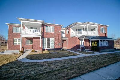Macomb Condo/Townhouse For Sale: 7006 Boulder Pointe Drive
