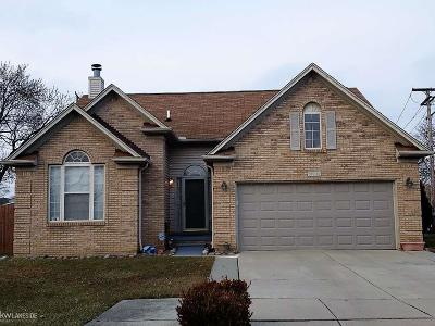 Macomb Single Family Home For Sale: 18241 Blue Island Ct
