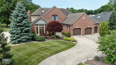 Clinton Township Single Family Home For Sale: 37419 Fiore Trl