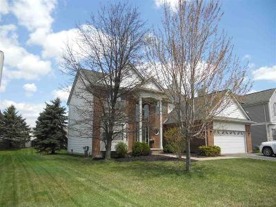 Lake Orion Single Family Home For Sale: 1060 Parkland
