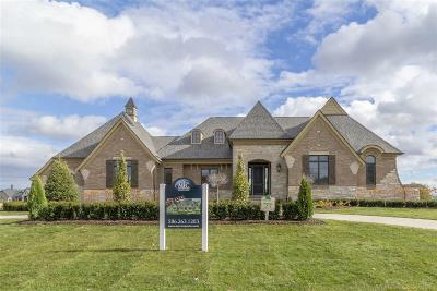 Macomb Single Family Home For Sale: 61558 Bradbury Run