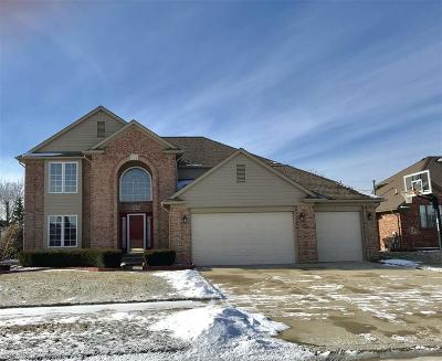 Macomb Single Family Home For Sale: 48033 Daisy Drive