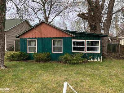 Algonac Single Family Home For Sale: 336 Greenwood