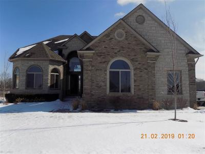 Shelby Twp Single Family Home For Sale: 54726 Deadwood Ln