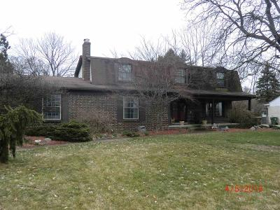 Shelby Twp Single Family Home For Sale: 54815 Blue Cloud