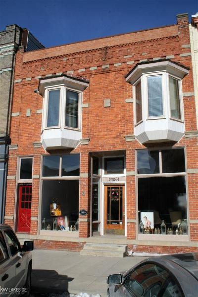 Armada, Armada Twp Commercial/Industrial For Sale: 23061 E Main St