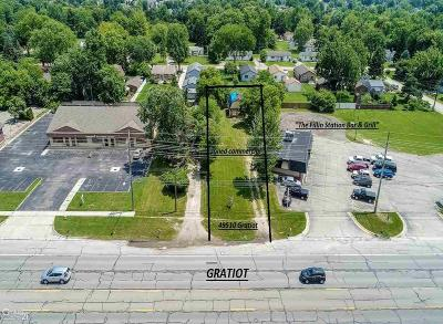Commercial/Industrial For Sale: 49510 Gratiot