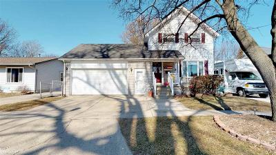Marine City Single Family Home For Sale: 337 N Elizabeth