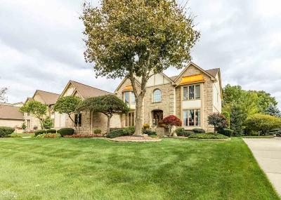 Macomb Single Family Home For Sale: 54538 Ridgeview