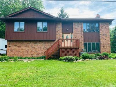 Oakland Twp Single Family Home For Sale: 56 Letts Rd.