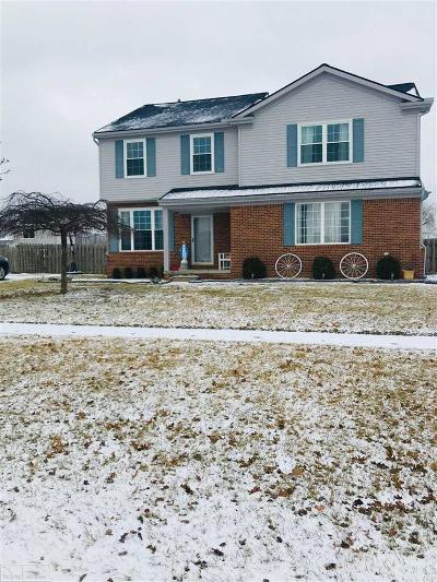 New Baltimore Single Family Home For Sale: 52024 Huntley