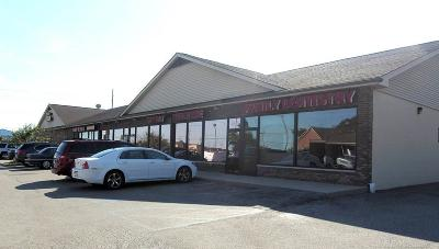Shelby Twp Commercial Lease For Lease: 13459 23 Mile