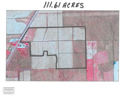 Residential Lots & Land For Sale: 60114 Gratiot Ave