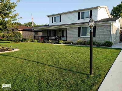 Macomb Single Family Home For Sale: 16519 Walcliff Dr