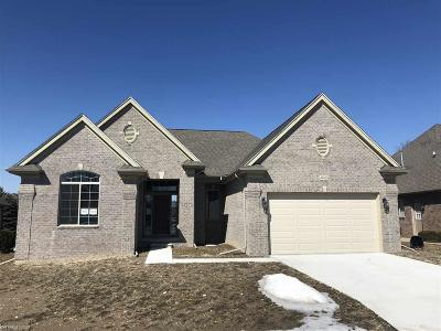 Macomb Condo/Townhouse For Sale: 49529 Ishpeming Dr