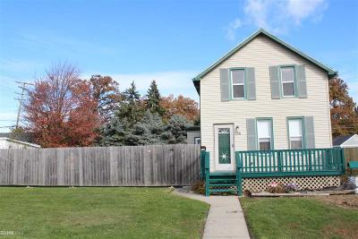 Mount Clemens Single Family Home For Sale: 234 Hubbard