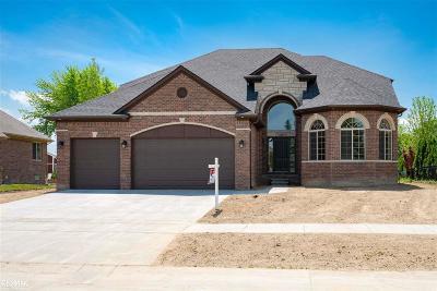 Macomb MI Single Family Home For Sale: $449,900