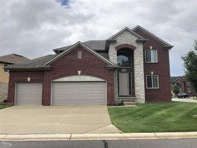 Shelby Twp Single Family Home For Sale: 4139 Hawks Nest