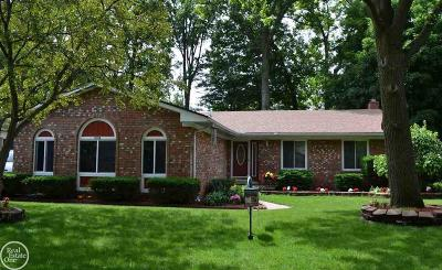 Troy Single Family Home For Sale: 2158 Topaz