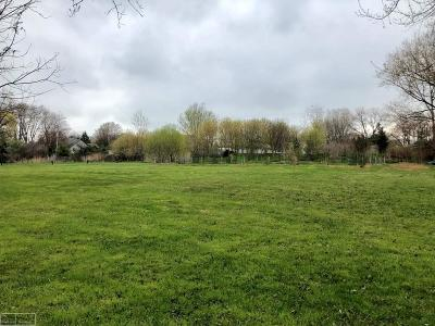 Harrison Twp Residential Lots & Land For Sale: Chartier