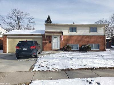 Sterling Heights Single Family Home For Sale: 11849 Delvin Drive