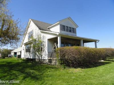 Lenox Single Family Home For Sale: 66351 Gratiot