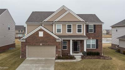 Macomb Single Family Home For Sale: 49195 Deneweth Farms