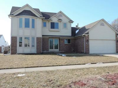 Macomb Single Family Home For Sale: 46549 Creekside