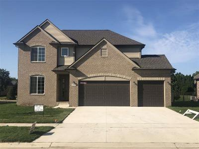 Sterling Heights Single Family Home For Sale: 14723 Hannebauer Ct.