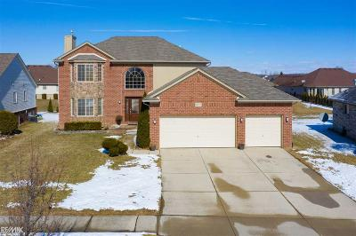 Macomb Single Family Home For Sale: 18217 Country Club Dr