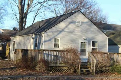 Lapeer Single Family Home For Sale: 4079 Pleasant St