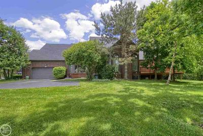 Shelby Twp Condo/Townhouse For Sale: 2028 Barberry Drive