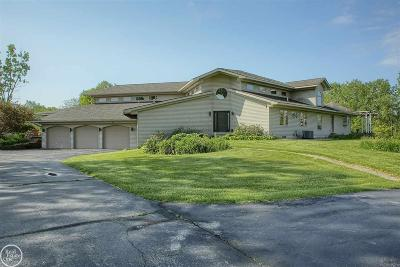 Armada Single Family Home For Sale: 21750 Pratt Road