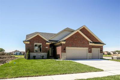 Macomb Twp Single Family Home For Sale: 17166 Chianti Ct