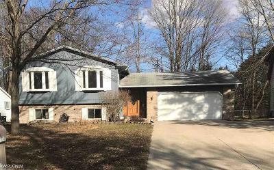 Fort Gratiot Single Family Home For Sale: 3604 Old Farm Lane