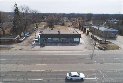 Commercial/Industrial For Sale: 49908 Gratiot