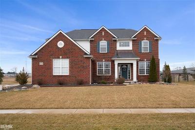 Macomb Single Family Home For Sale: 62761 Crimson Dr